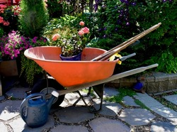 Orange Wheel Barrow and Tools with Pink Geranium and Blue Flower Pot