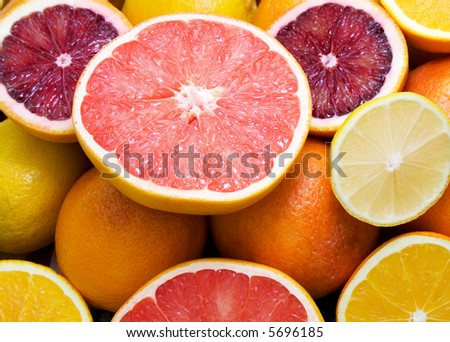 oranges, blood oranges, lemons and grapefruits