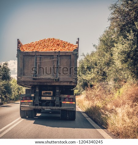 Oranges carried on a truck #1204340245