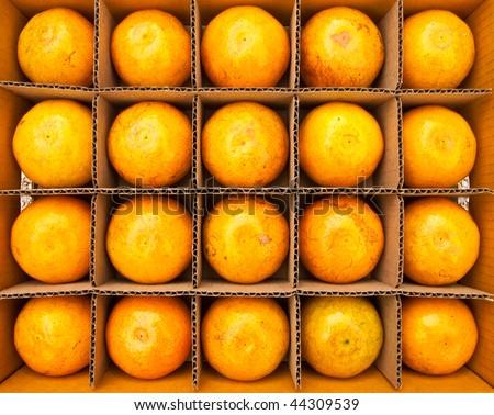 Oranges in paper box