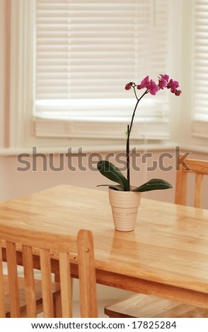 Orchid flower in beige pot on the wooden table