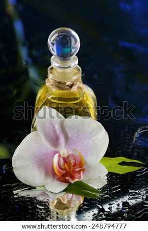 Orchid flower with water drops and bottle of perfumes on dark colorful background