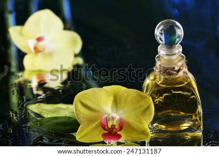 Orchid flowers with water drops and bottle of perfumes on dark colorful background