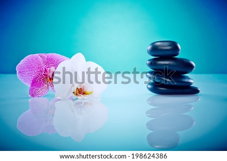 Orchis with a staple of hot stones Wellness and Spa Image, works perfect for advertising Health and Beauty, Spirituality or Massage.