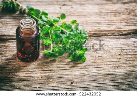 Oregano essential oil and fresh twig on wooden background, copy space #522432052