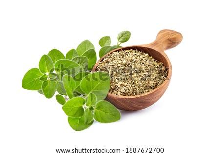 Oregano or marjoram leaves isolated on white background. Oregano fresh and dry. Stock photo ©