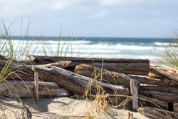 Oregon Beaches Pacific North West