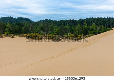 Oregon Dunes National Recreation Area, USA