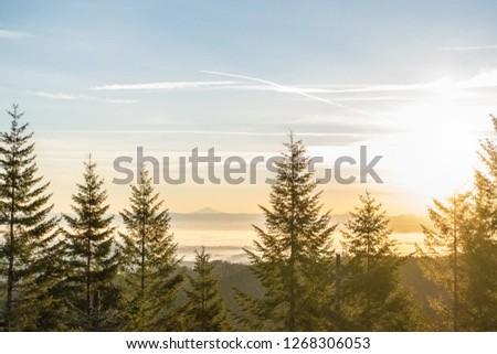 Oregon forest sunrise #1268306053