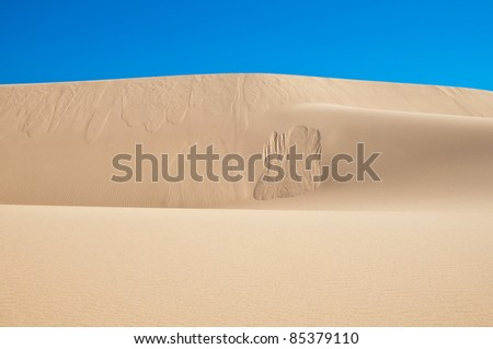 Oregon sand dunes showing patterns and textures against a blue sky