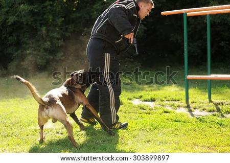 Orel, Russia, August 01, 2015: Mumu Fest, Turgenev\'s story art-festival, police dog handler show, dog biting criminal with the gun