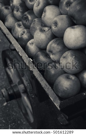 Organic apples stacked in wooden cart for sale in farmers market . Black and white photo.
