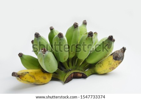 Organic banana grown up from nature have some mealybug and some ripe.
