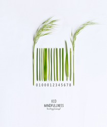 Organic barcode, made of green grass and sprout isolated on a white background. Think Green. Environmentally friendly planet. Think Green.Flat lay.Top view.