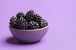 Organic blackberries in a bowl, isolated on a purple background. Close-up of fresh blackberries fruits. Ripe berries bowl. Summer sweet fruits.