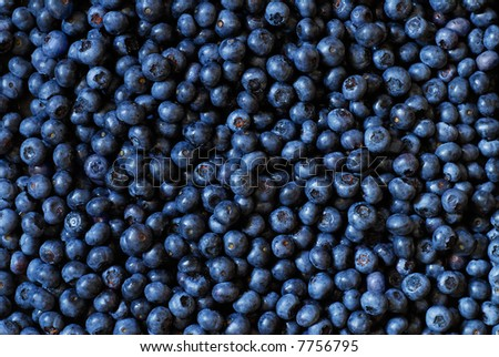 Organic blueberry background