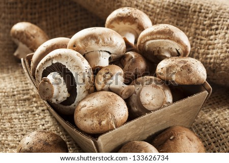 Organic Brown Baby Bella Mushrooms against a background