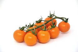 Organic Cherry Orange Raptor Tomatoes on the Vine Isolate on a white background