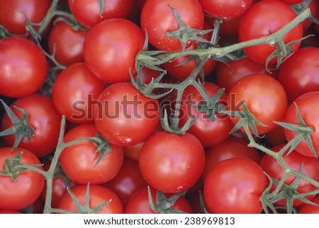 Organic cherry tomatoes. Multitude of cherry tomatoes, close-up view