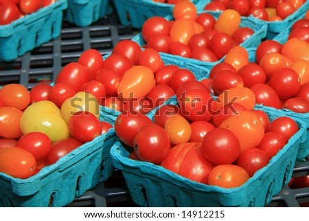 Organic Cherry Tomatos at the Farmers Market