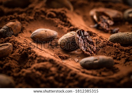 Organic cocoa powder with cocoa beans for baking. Baking and cooking ingredients.