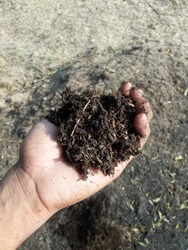 Organic compost or manure  are fertilizers derived from animal matter, animal excreta (manure), human excreta, and vegetable matter (e.g. compost and crop residues).