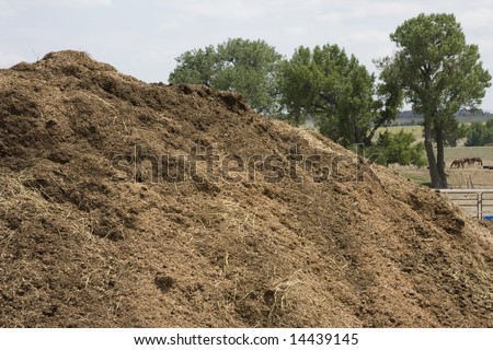 Organic Compost Pile