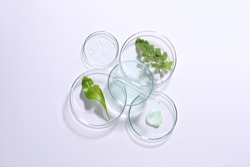 Organic cosmetic product, natural ingredient and laboratory glassware on white background, top view