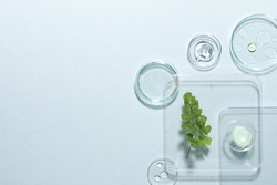 Organic cosmetic product, natural ingredients and laboratory glassware on light background, flat lay. Space for text