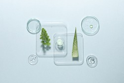 Organic cosmetic product, natural ingredients and laboratory glassware on light background, flat lay