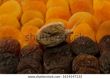 Organic dried apricots and dried figs