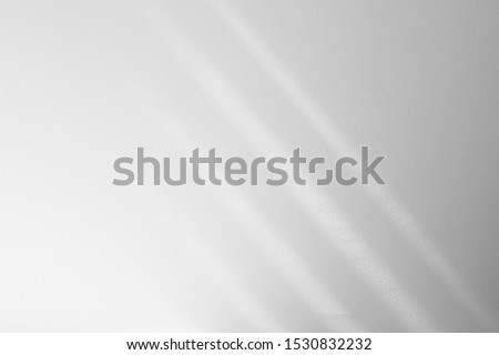 Photo of  Organic drop diagonal shadow on a white wall, overlay effect for photo, mock-ups, posters, stationary, wall art, design presentation
