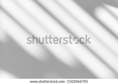 Photo of  Organic drop shadow on a white wall, overlay effect for photo, mock-ups, posters, stationary, wall art, design presentation