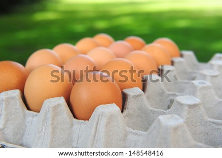 organic eggs in carton