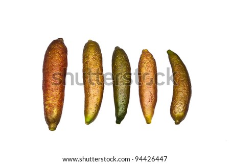 Organic Finger Lime