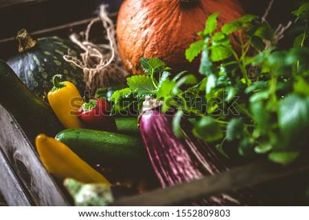 Organic food. Organic vegetables on wood.