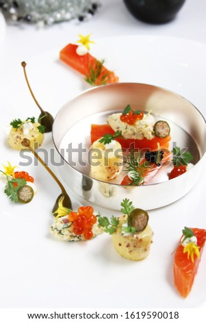 organic gourmet food concept with closeup fresh ingredients