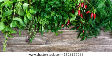 Organic green fresh herbs on a wooden background. Freshly picked parsley, basil, thyme, arugula, dill. Banner. Free space for an inscription.