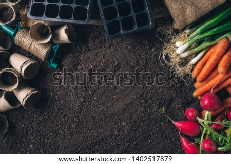 Organic homegrown produce and gardening equipment with copy space, top view of greenhouse peat soil