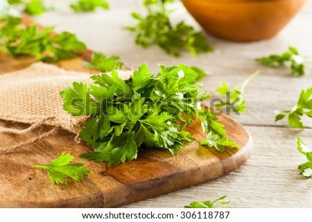 Shutterstock Organic Italian Flat Leaf Parsley Ready to Eat
