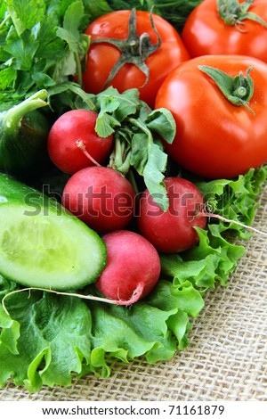 Organic mix of fresh vegetables on the table