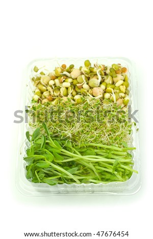Organic sprouts of mung beans, chick peas, alfalfa and pea leaf isolated on white background, vertical format