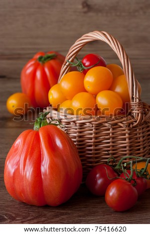 Organic tomatoes in wicker basket on a garden wooden table.