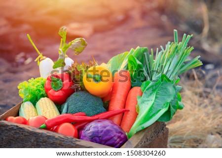 Organic vegetables on wood ,Fresh organic vegetables.Organic vegetables and fruits, Food background. #1508304260