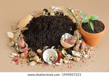 Organic waste, heap of biodegradable vegetable compost with decomposed organic matter on top and seedling in terracota flower pot, closeup, zero waste, eco friendly, waste recycling concept Foto stock ©