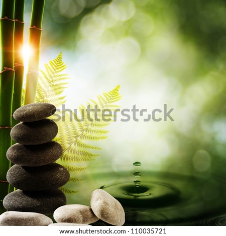 Oriental eco backgrounds with bamboo and water splash