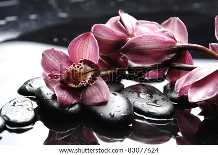 Oriental spa with brunch pink orchid on pebbles