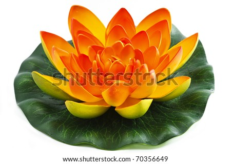 Oriental Water Lily flower with Chinese Chopsticks
