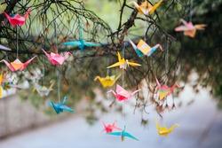 Origami cranes on the tree