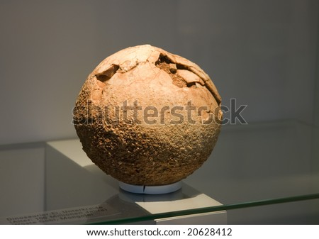 original dinosaur's egg (100 million years old) - University of Zurich